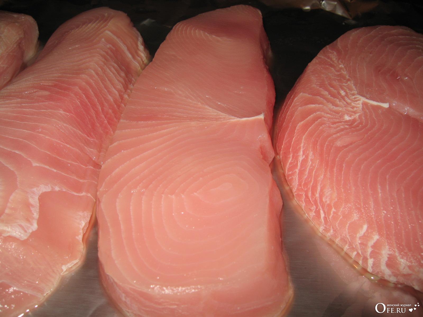 мясо акулы сырое