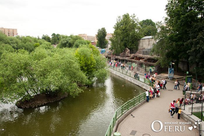 водоем Московского зоопарка
