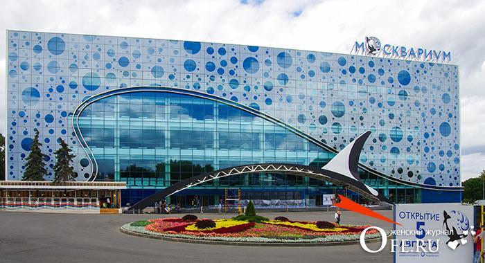 Дельфинарии в Москве: адреса и цены